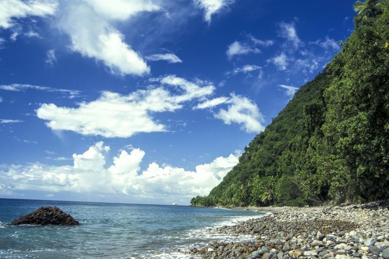 Champagne Reef, Dominica