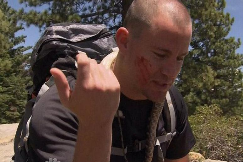 Channing Tatum Just Chopped Off and Ate a Rattlesnake's Head