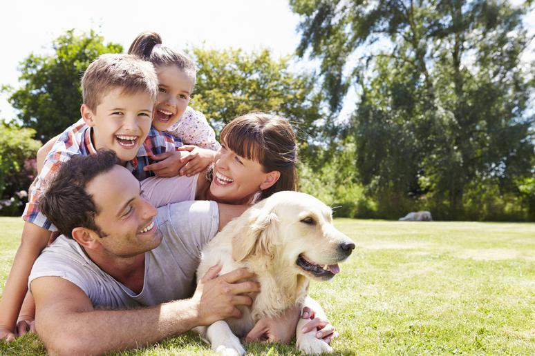 These Are the Most Family-Friendly Dogs