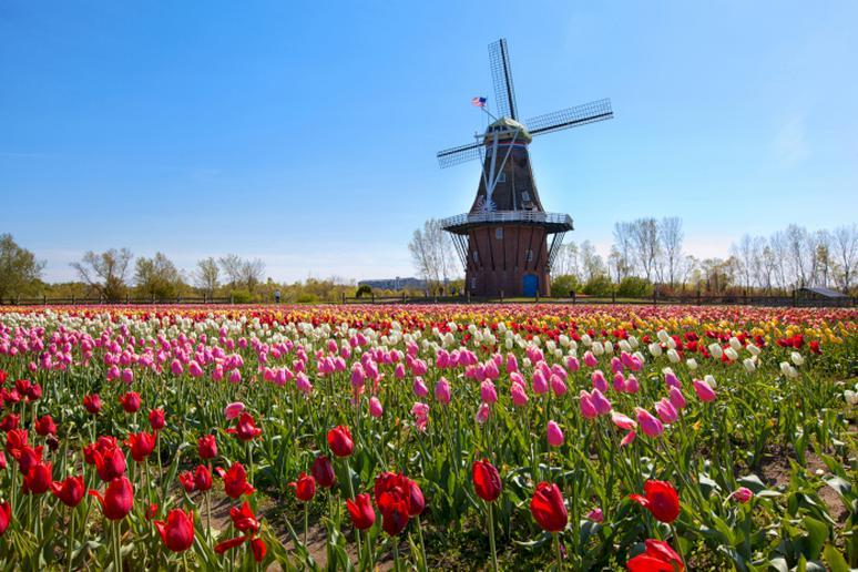 Michigan: Holland