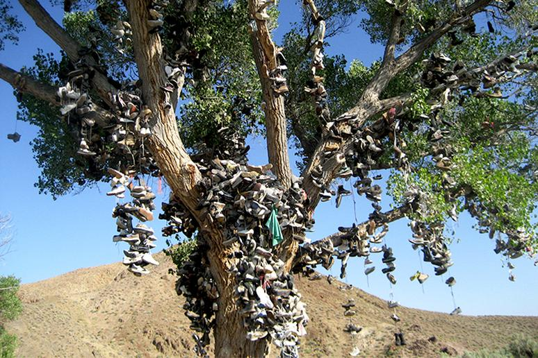 The Shoe Tree, Middlegate, Nevada