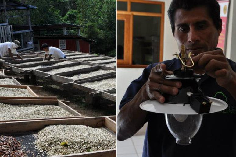 Farmers in Central America use Coffee Wastewater to Generate Energy