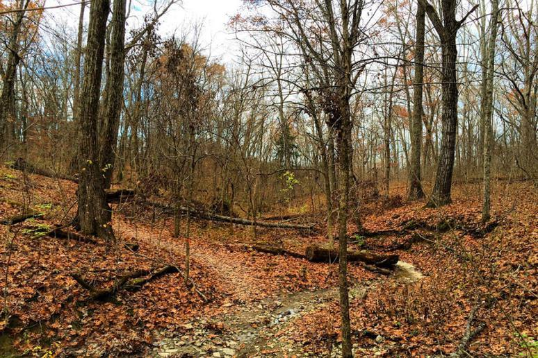 Kentucky – The Parklands of Floyds Fork