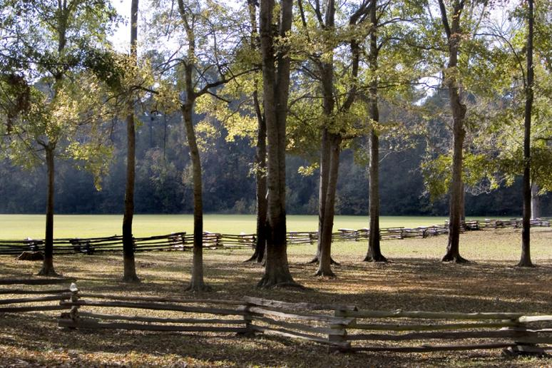 Mississippi - Natchez Trace National Scenic Trail