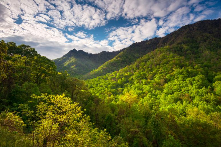 Great Smoky Mountains National Park, Tennessee / North Carolina