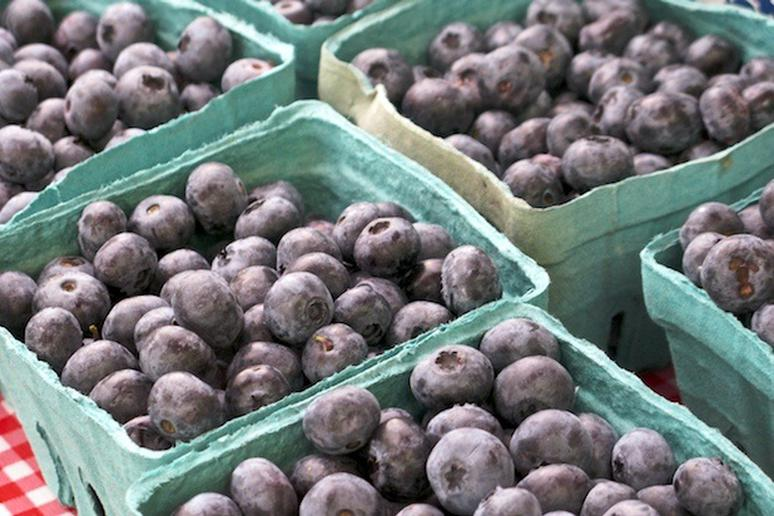 Blueberries at the farmers' market in nyc.