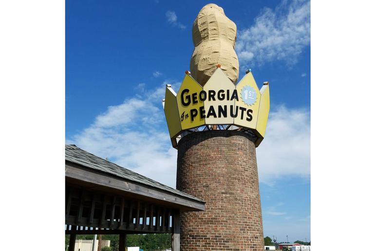 World's Largest Peanut (Ashburn, Georgia)