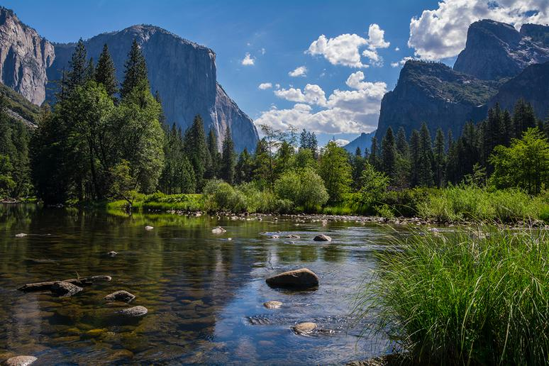 California: Yosemite National Park