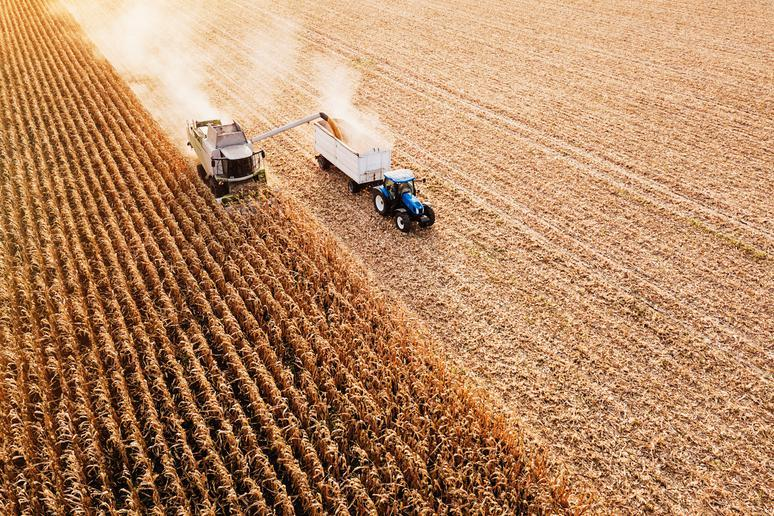 Climate change: Food security
