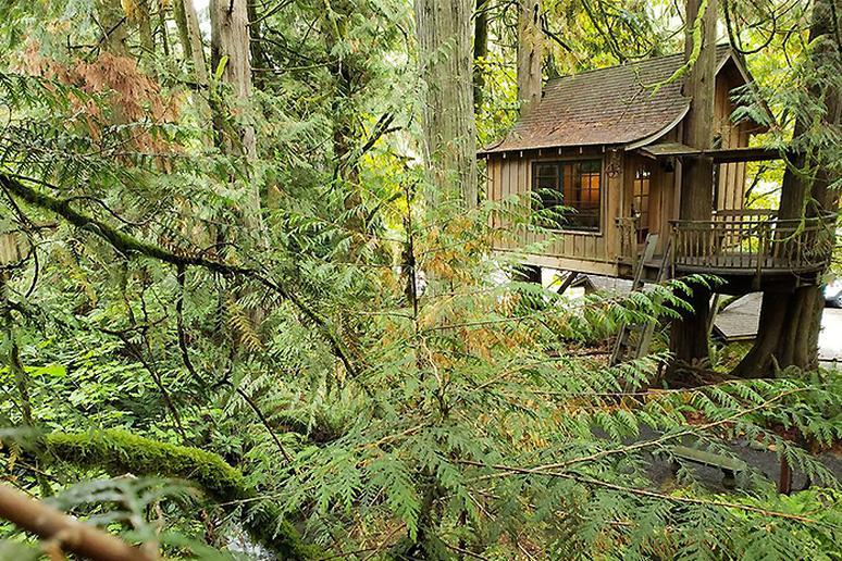 In a Treehouse (Fall City, Washington)