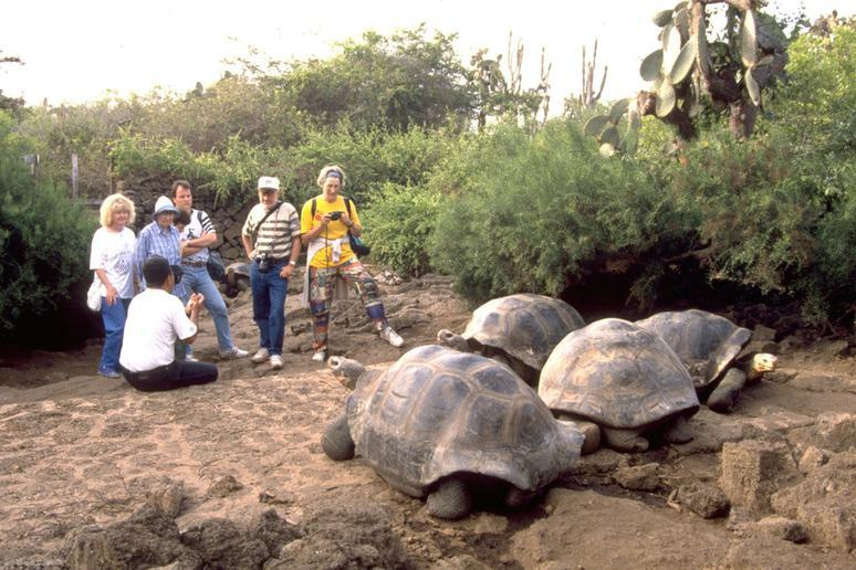 Galápagos Islands, Ecuador