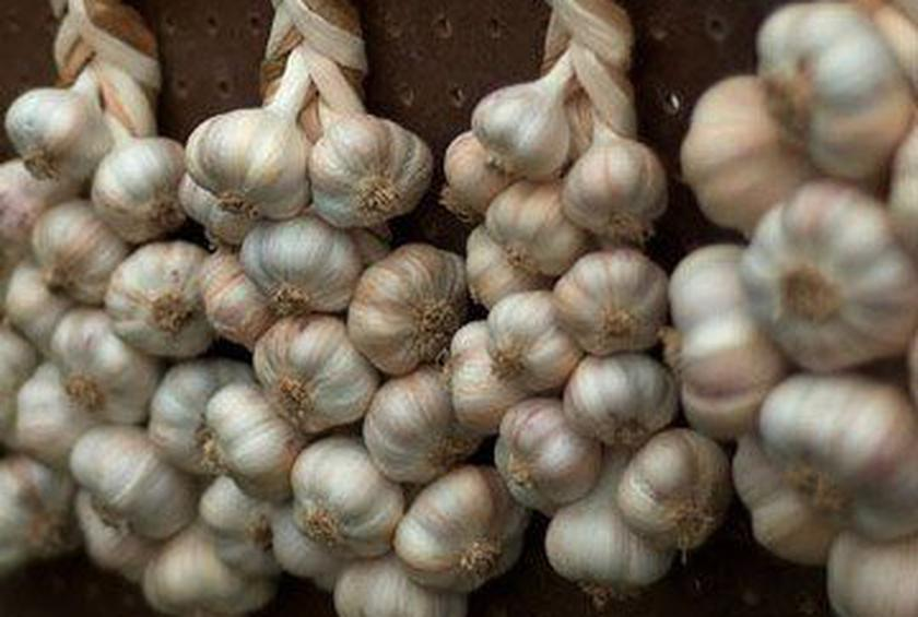 Unusual Uses for Garlic
