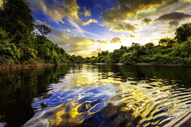 Up-River on the Amazon, Brazil