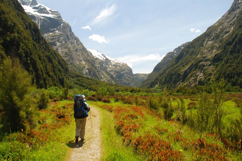 Hike the Milford Track