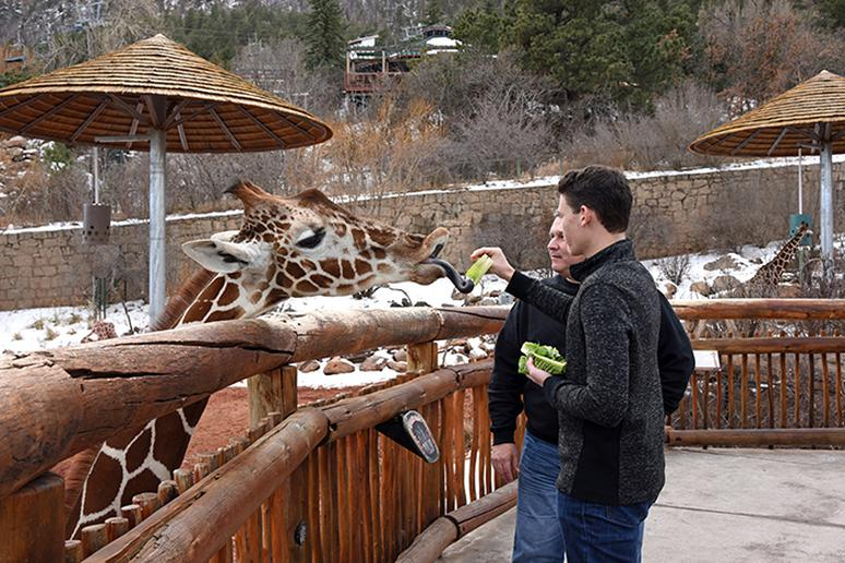 Cheyenne Mountain Zoo in Colorado Springs, Colorado