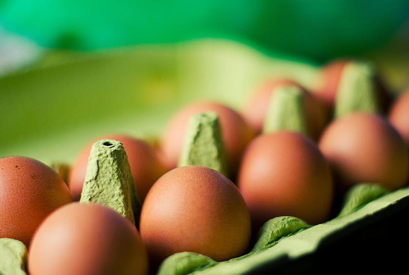 USDA Opens Probe Into American Egg Board's Conspiracy Against Vegan Nemesis
