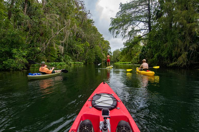 Find a kayaking tour