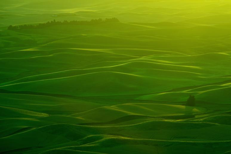 Palouse, Washington and Idaho