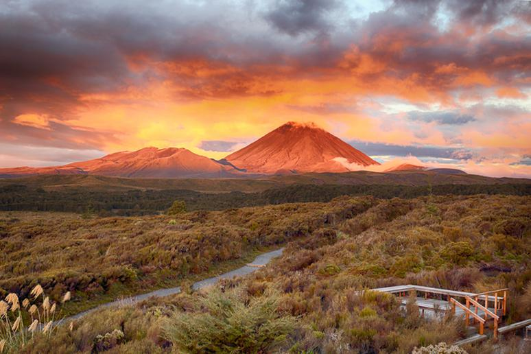 Explore the path of an active volcano