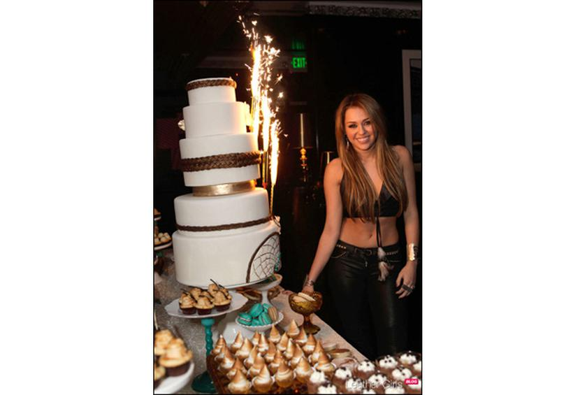 Miley Cyrus 18th Birthday Cake From 15 Outrageous Celebrity