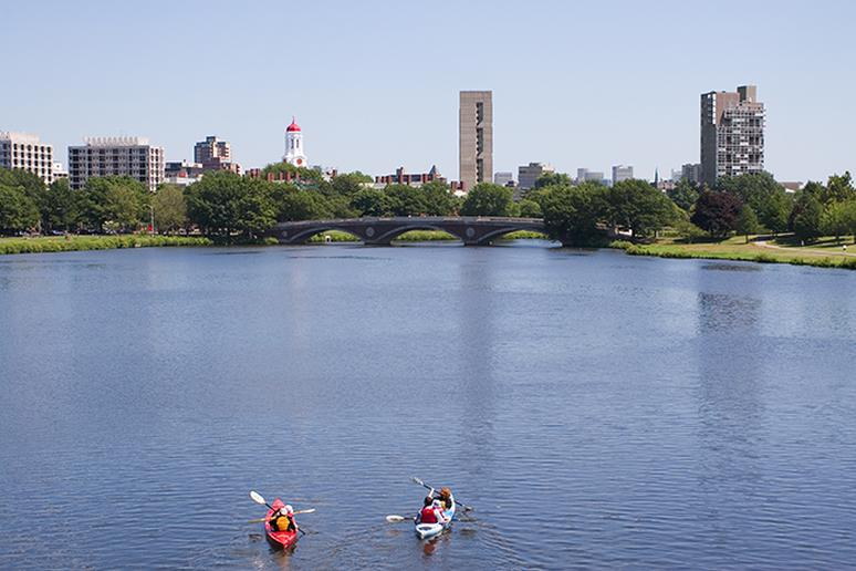 Book an urban kayaking tour