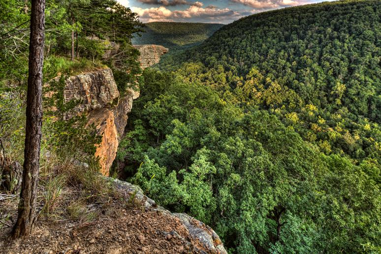 Whitaker Point, Arkansas