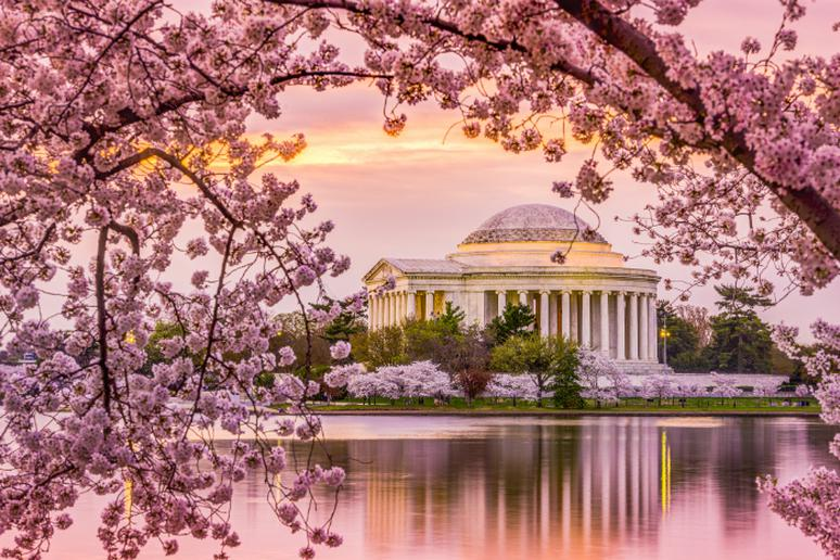 Washington D.C. – Jefferson Memorial in the spring