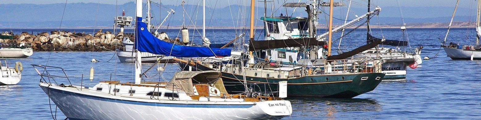Historic Fishing Town of Monterey, California, Gets New Funding to Focus on Sustainable Sourcing