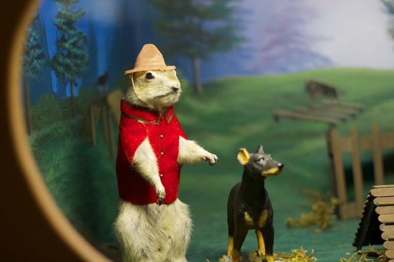 31. Gopher Hole Museum