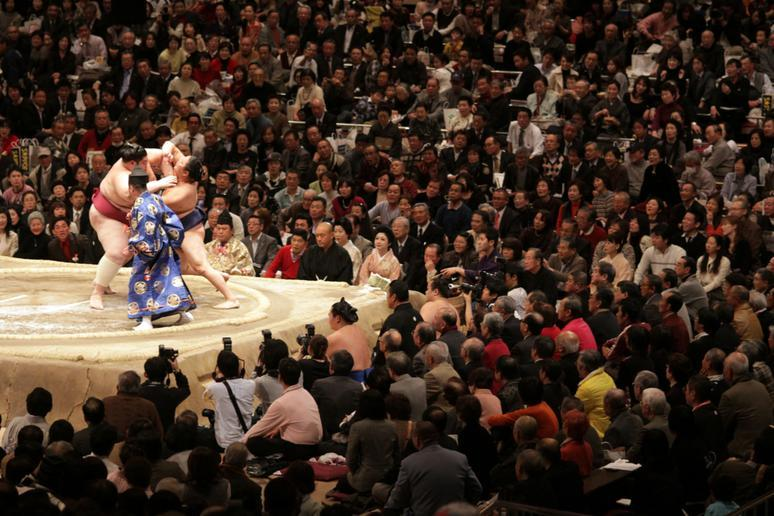 Catch a sumo match in Japan