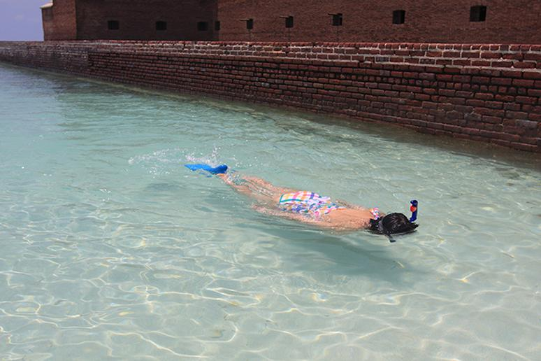 Go snorkeling at Dry Tortugas, Florida