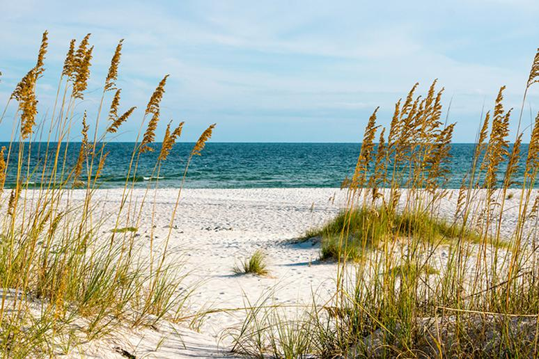 Alabama—The Gulf Shores