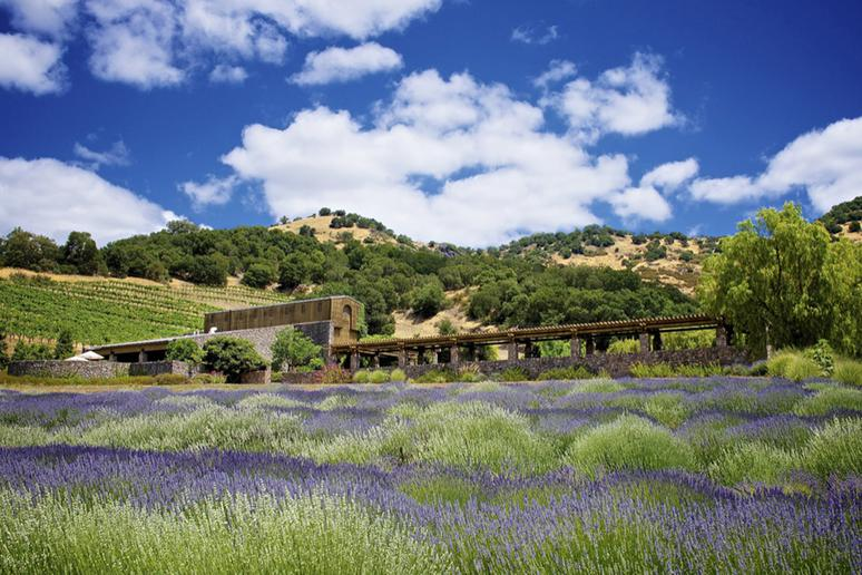 15. Robert Sinskey Vineyards, Napa, Calif.