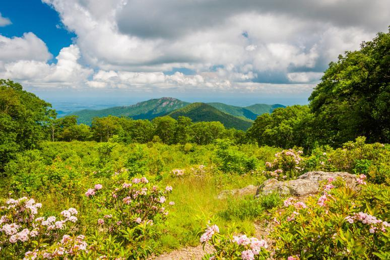 Virginia - Shenandoah National Park