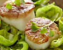 Scallops over Brussels sprouts