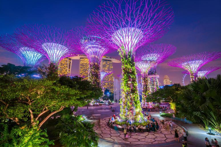 Strolling through a futuristic nature park in Singapore