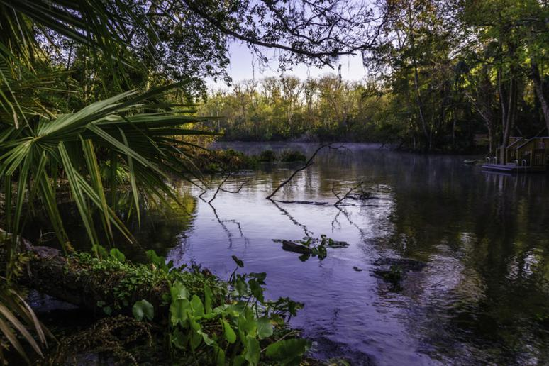 Florida - Wekiwa Springs Loop Trail