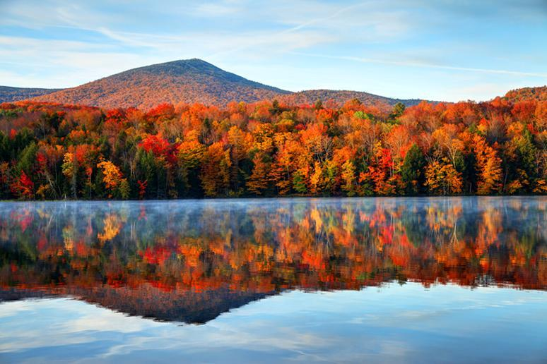 Vermont: Gifford Woods State Park