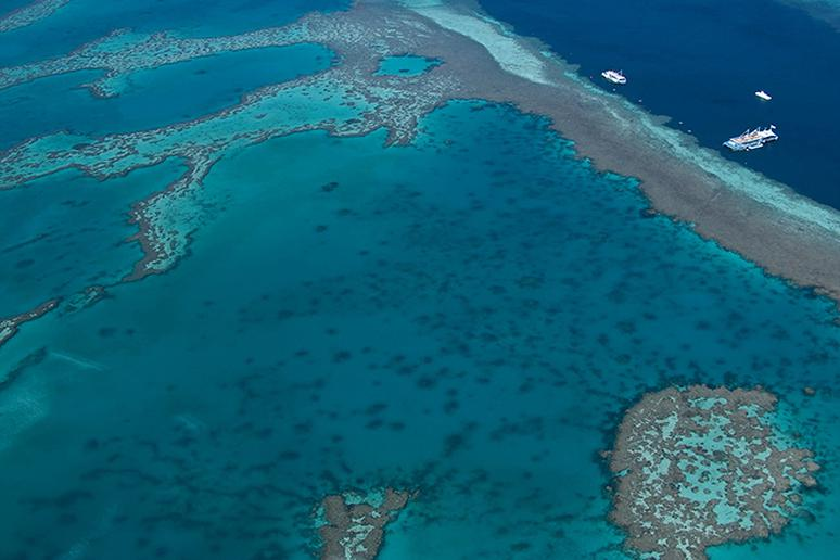 Largest coral reef