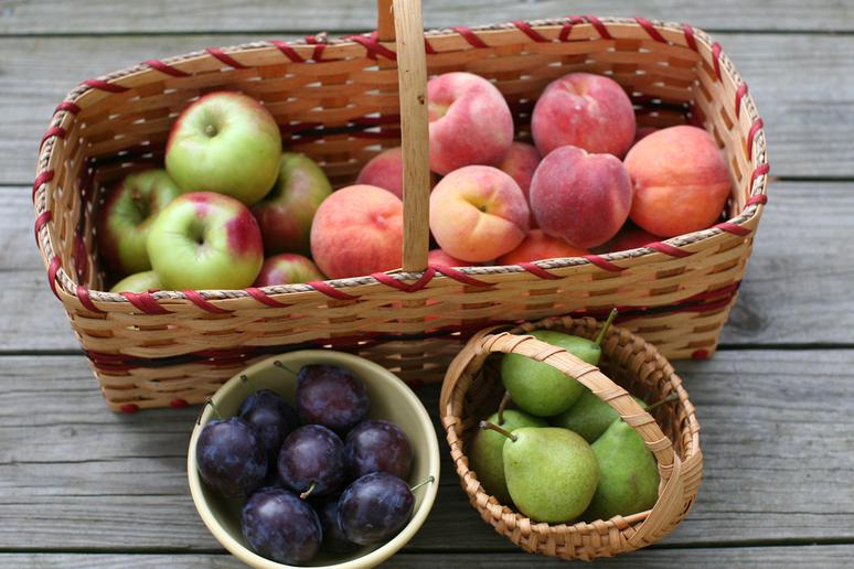 Cider is Made from More Than Apples