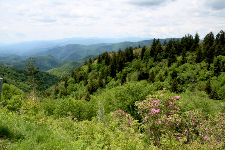 North Carolina - The Blue Ridge Parkway