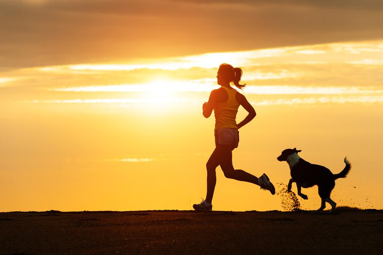 Do: Exercise your dog before work