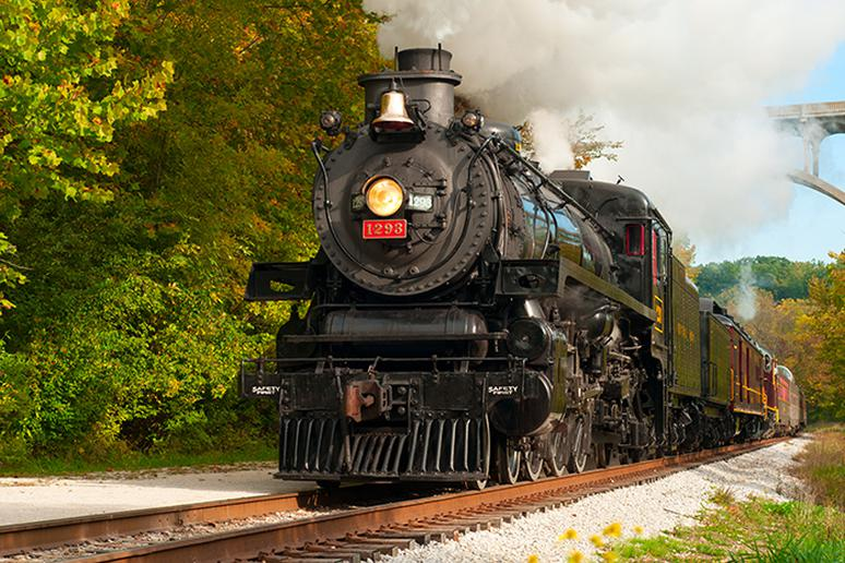 Take a train excursion