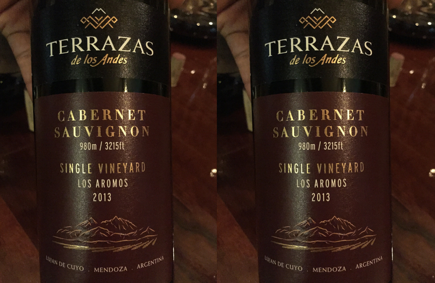 Malbec And Cabernet Sauvignon From A Top Argentinean Producer