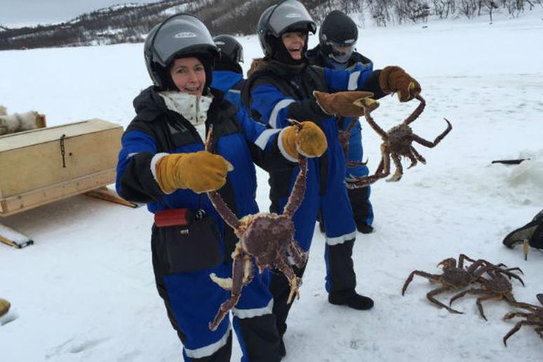 A King Crab Safari in Kirkenes, Norway