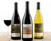 Impressive Kosher Wines from the Galil Mountain