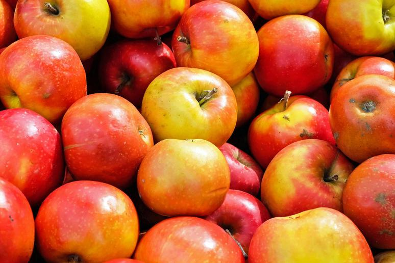 Apples Have More Genes Than Humans Do