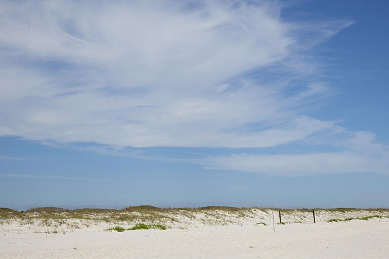 Alabama: Beaches (Gulf Shores)