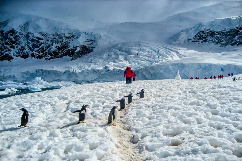 Embark on an expedition to Antarctica