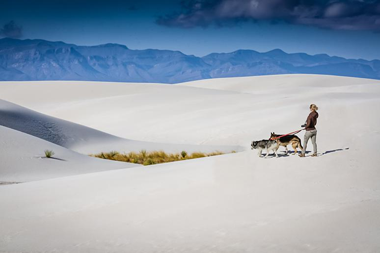 Dunes Drive, White Sands National Monument in New Mexico